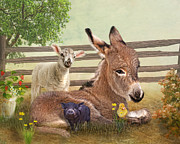 Donkey Mixed Media Framed Prints -  A Little Rest Framed Print by Trudi Simmonds