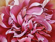 Abstract Peony Print by Paula L