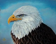 American Bald Eagle Painting Prints -  American Bald Eagle Portrait Print by Paintingart Galleries
