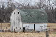 Barn Lots Photos -  Barn Landscape by Kathy Cornett