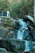 Patrick Shupert Metal Prints -  Bottom of Laurel Falls Metal Print by Patrick Shupert