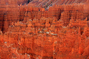 Hoodoo Framed Prints -  Bryce Canyon Hoodoos Framed Print by Aidan Moran