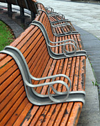 Jim Nelson Posters -  Curved Bench Poster by Jim Nelson