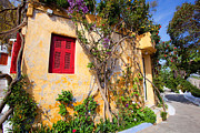 Decorated House With Plants Print by Aiolos Greek Collections