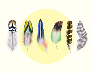 Whimsical Illustration Posters -  Feathers 2 Poster by Mark Ashkenazi