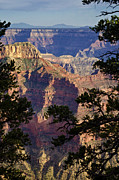 Saija  Lehtonen -  From The North Rim of the Grand Canyon