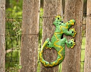 Barnboard Prints -  Gecko on the Fence Print by Terry Fleckney