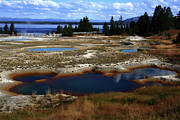 Geysers Photos -  Geyser Basin Yellowstone National Park by Aidan Moran