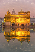 Indian Guru Framed Prints -  Golden Temple in Amritsar - Punjab - India Framed Print by Luciano Mortula