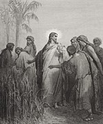 Landscapes Drawings Metal Prints -  Jesus and His Disciples in the Corn Field Metal Print by Gustave Dore