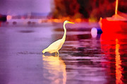Waterfowl Paintings -  Little Egret by Odon Czintos