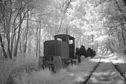Alienating Prints -  locomotive with wagons in infrared light in the forest in Netherlands Print by Ronald Jansen