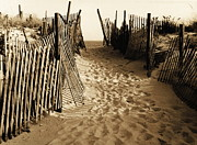 Sand Fences Framed Prints -  Long Beach Island in NJ 1977 - Sepia Framed Print by Jacqueline M Lewis