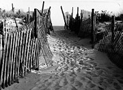 Sand Fences Framed Prints -  Long Beach Island NJ 1977 - Black/White Framed Print by Jacqueline M Lewis