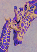 Giraffe Digital Art Framed Prints -  Loving Purple Giraffes Framed Print by Jane Schnetlage