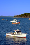 Maine Metal Prints -  Maine Lobster Boat Metal Print by Olivier Le Queinec