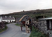 Horse And Cart Art -  Making a Living on Inishmore - Aran Islands - Ireland by Nina-Rosa Duddy