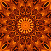 Stuart Turnbull Metal Prints -  Mandala 62 Metal Print by Stuart Turnbull