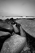 Tidepools Posters -  Perfect Light Black and White Poster by Peter Tellone
