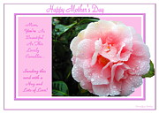Gratitude Card Posters -  Pink Camellia - Happy mothers Day Poster by Joyce Dickens