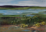 Salt Marsh Print by Diane Ursin