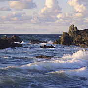 Coasts Prints -  Seascape. rocks. Normandy. France. Europe Print by Bernard Jaubert