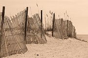 Panama City Beach Posters -  Sepia beach fence Poster by Michelle Powell