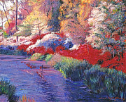 Gardenscape Paintings -  Spring Azalea Reflections by  David Lloyd Glover