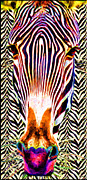Zebra Face Prints -  Striped Zebra Close Up  Print by Daniel Janda