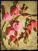 Textured Floral Prints -  Support for Cancer Print by Chris Berry