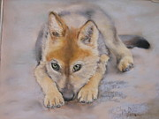 Animales Framed Prints -  Sweet Wolf Framed Print by Olga D