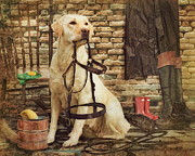 Trudi Simmonds -  Tack Cleaning Day