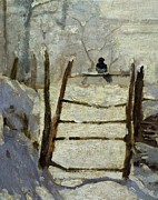 Magpie Paintings -  The Magpie by Claude Monet