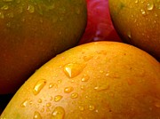 Mango Metal Prints -  Tres Mangoes Metal Print by Greg Allore
