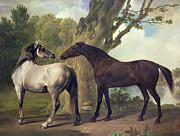 Loose Painting Posters -  Two Horses in a landscape Poster by George Stubbs