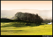 Farming Digital Art Originals -  Wensleydale Dusk by Mike Hoyle