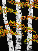 Handmade Trunk Posters -  White Birch Trees In Fall on Black Background Painting Poster by Keith Webber Jr