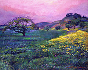 David Lloyd Glover -  WILDFLOWER FIELDS