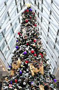 Terry DeLuco -  Wintergarden Christmas Tree Pittsburgh
