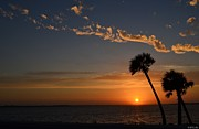 0502 Palms With Sunrise Colors On Santa Rosa Sound Print by Jeff at JSJ Photography