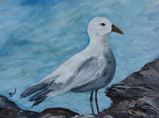 Bird Prints Paintings -  Mr. Gull by Beverly Livingstone