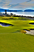 Us Open Framed Prints - #17 at Chambers Bay Golf Course - Location of the 2015 U.S. Open Championship Framed Print by David Patterson