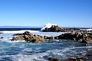 Barbara Snyder Prints - 17 Mile Drive III Print by Barbara Snyder