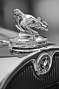 Black And White Photos Photos - 1931 American Austin Roadster Hood Ornament by Jill Reger