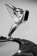 Collector Hood Ornament Posters - 1931 Cord L-29 LeGrande Speedster Hood Ornament Poster by Jill Reger