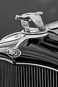 Ford V8 Prints - 1932 Ford V8 Hood Ornament Print by Jill Reger