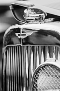 Exotic Metal Prints - 1934 Aston Martin Mark II Short Chassis 2-4 Seater Grille Emblem Metal Print by Jill Reger