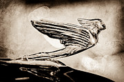Collector Hood Ornament Posters - 1938 CadillacV-16 Hood Ornament Poster by Jill Reger