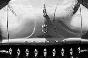 Collector Hood Ornament Metal Prints - 1952 Desoto Grille - Hood Ornament - Emblems Metal Print by Jill Reger