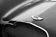 Beach Photographs Prints - 1953 Aston Martin DB2-4 Bertone Roadster Hood Emblem Print by Jill Reger